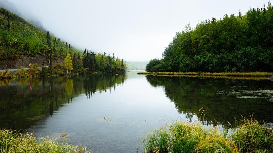 Flod-vand-natur