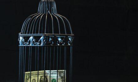 Er du fanget eller skal du tjene penge til turen?